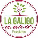 La Galigo Foundation